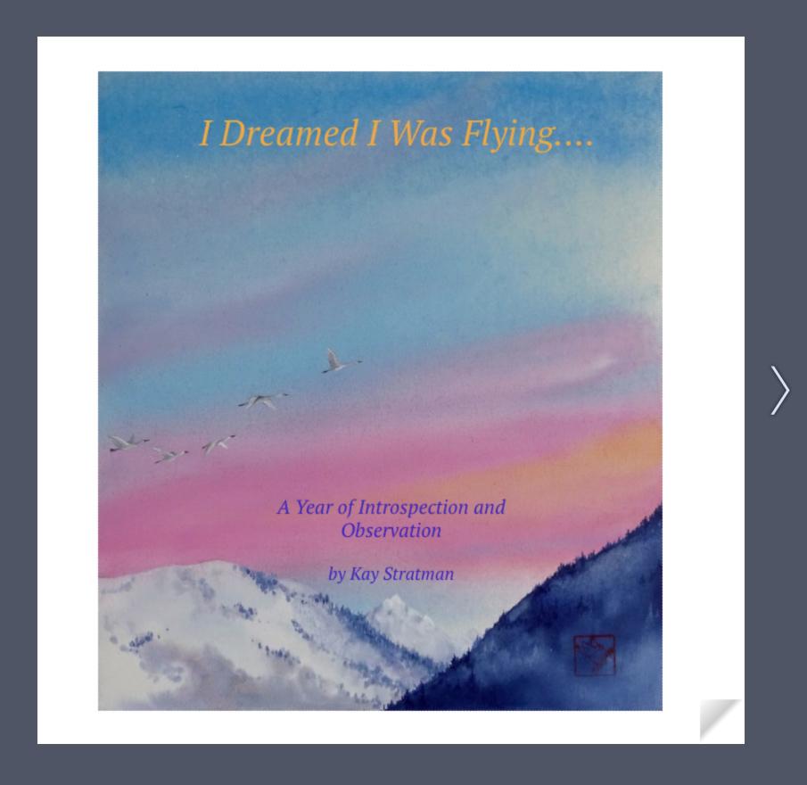 I Dreamed I Was Flying Flipbook